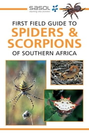 First Field Guide to Spiders & Scorpions of Southern Africa ebook by Hawthorne, Tracey