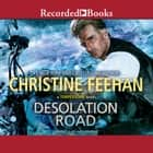 Desolation Road audiobook by Christine Feehan
