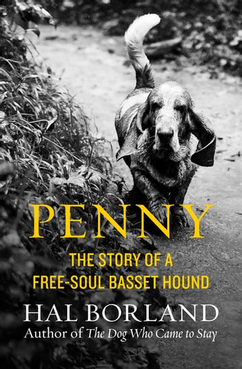 Penny - The Story of a Free-Soul Basset Hound ebook by Hal Borland