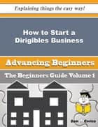 How to Start a Dirigibles Business (Beginners Guide) ebook by Talia Hobson