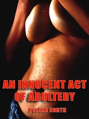 An Innocent Act of Adultery ebook by Polera North