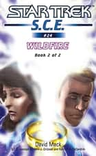 Wildfire Book 2 ebook by David Mack