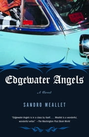 Edgewater Angels - A Novel ebook by Sandro Meallet