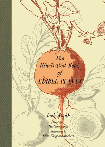 The Illustrated Book of Edible Plants ebook by Jack Staub