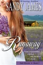 Runaway (Safe Havens 2) ebook by Sandy James