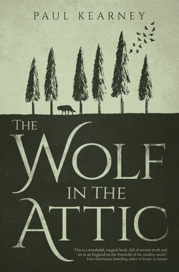 The Wolf in the Attic ebook by Paul Kearney