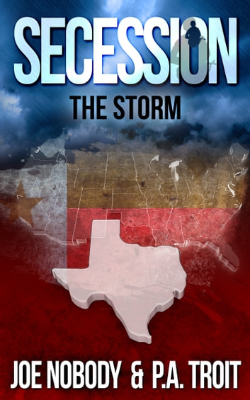 Secession - The Storm ebook by Joe Nobody,P.A. Troit
