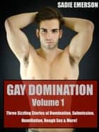 Gay Domination: Volume One ebook by Sadie Emerson