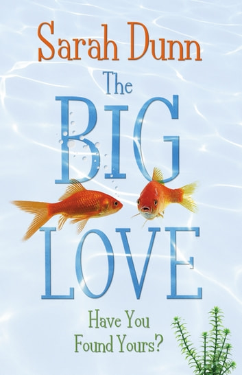 The Big Love eBook by Sarah Dunn