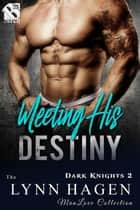 Meeting His Destiny ebook by Lynn Hagen