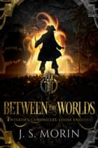 Between the Worlds - A Collection of Eight Twinborn Stories ebook by J.S. Morin