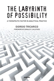 The Labyrinth of Possibility - A Therapeutic Factor in Analytical Practice ebook by Giorgio Tricarico