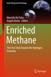 Enriched Methane - The First Step Towards the Hydrogen Economy ebook by