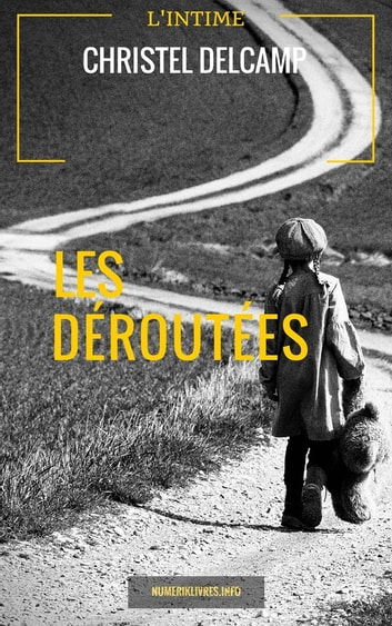 Les Déroutées ebook by Christel Delcamp