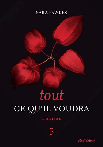 Tout ce qu'il voudra 5 ebook by Sara Fawkes