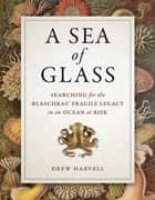 A Sea of Glass - Searching for the Blaschkas' Fragile Legacy in an Ocean at Risk ebook by Drew Harvell