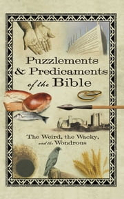 Puzzlements & Predicaments of the Bible - The Weird, the Wacky, and the Wondrous ebook by Howard Books