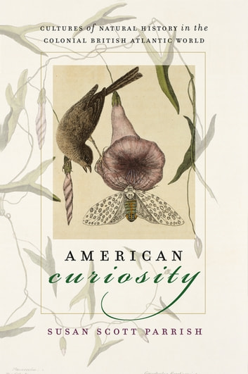 American Curiosity - Cultures of Natural History in the Colonial British Atlantic World ebook by Susan Scott Parrish