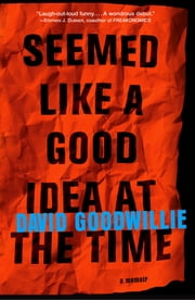 Seemed Like a Good Idea at the Time - A Memoir ebook by David Goodwillie