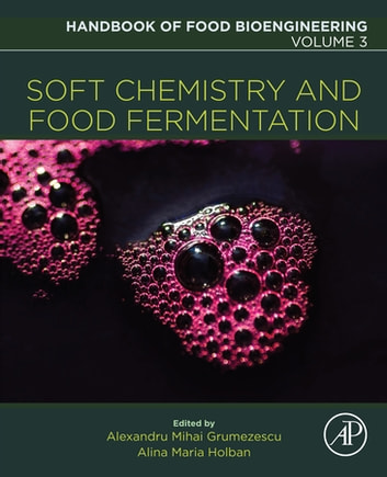 Soft Chemistry and Food Fermentation ebook by