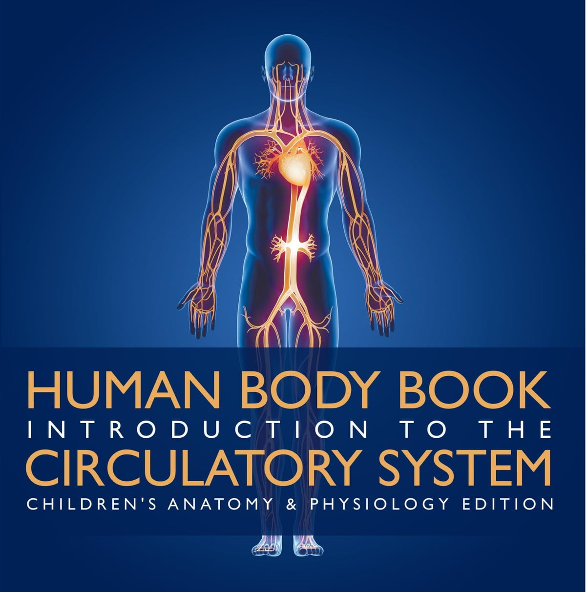 Human Body Book | Introduction to the Circulatory System ...