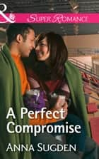 A Perfect Compromise (Mills & Boon Superromance) (The New Jersey Ice Cats, Book 4) ebook by Anna Sugden