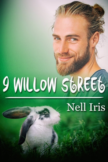 9 Willow Street ebook by Nell Iris