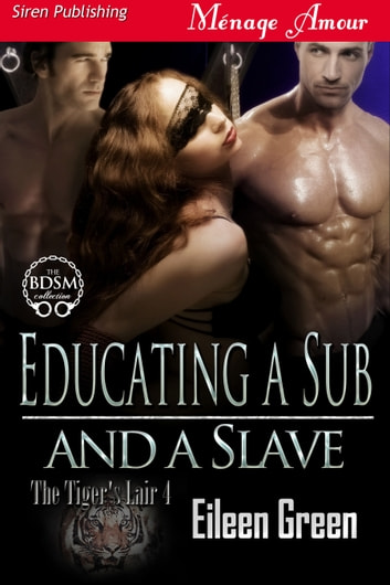 Educating a Sub and a Slave ebook by Eileen Green