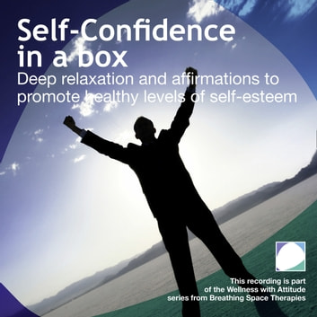 Self Confidence in a box audiobook by Annie Lawler