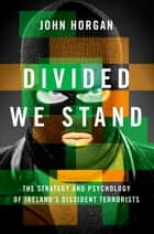 Divided We Stand ebook by John Horgan
