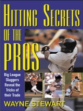 Hitting Secrets of the Pros ebook by Stewart, Wayne