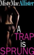 A Trap is Sprung ebook by Misty MacAllister