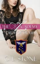 The Academy - Drop of Doubt ebook by C. L. Stone