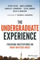 The Undergraduate Experience - Focusing Institutions on What Matters Most ebook by Peter Felten, John N. Gardner, Charles C. Schroeder,...
