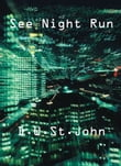 See Night Run