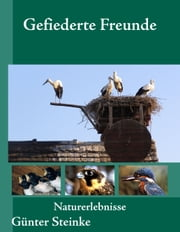 Gefiederte Freunde ebook by Günter Steinke