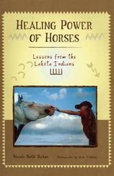 Healing Power of Horses - Lessons from the Lakota Indians ebook by Wendy Beth Baker