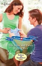 Ten Acres and Twins ebook by Kaitlyn Rice