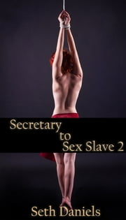 Secretary to Sex Slave 2 ebook by Seth Daniels