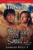 Big and Small ebook by Tedi Sinclair