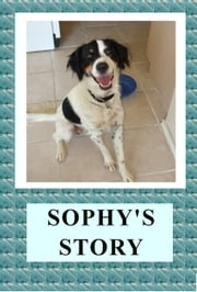 Sophy's Story ebook by April Kihlstrom