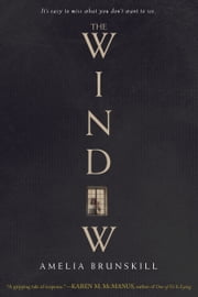 The Window ebook by Amelia Brunskill