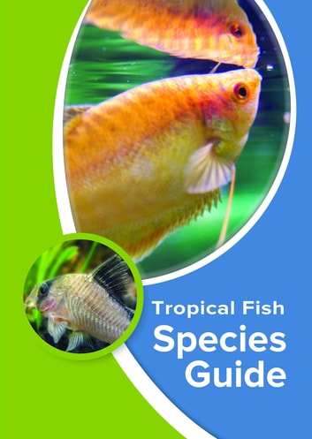 Tropical Fish Species Guide Ebook By Kevin Wilson 9781911174073