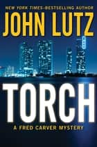 Torch ebook by John Lutz