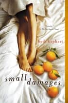 Small Damages ebook by Beth Kephart