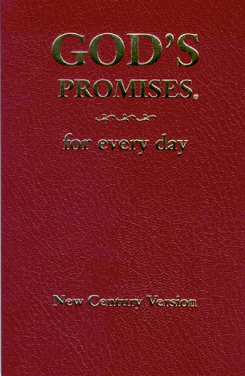 God's Promises for Every Day ebook by Jack Countryman,A. Gill