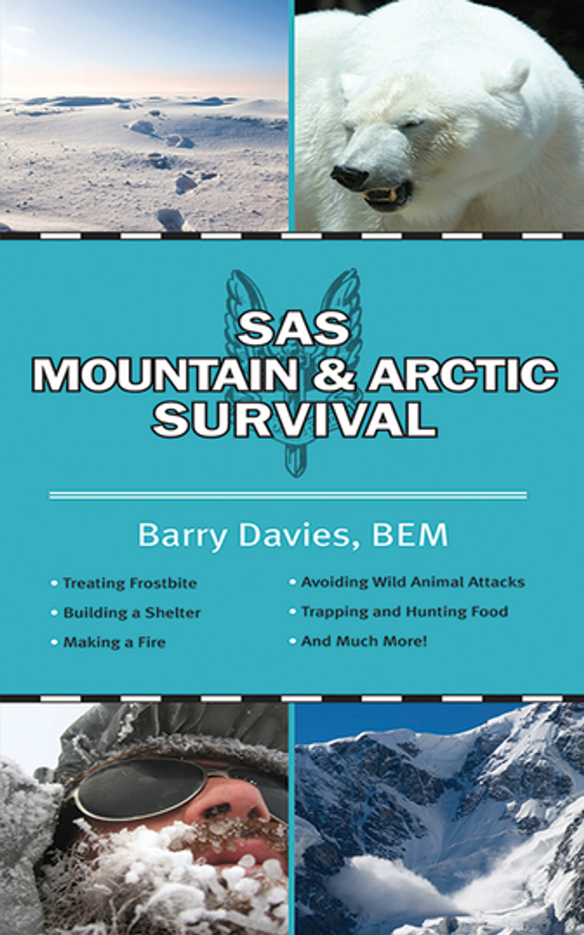 SAS Mountain and Arctic Survival eBook by Barry Davies ...