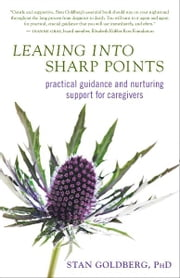 Leaning into Sharp Points ebook by Stan Goldberg, PhD