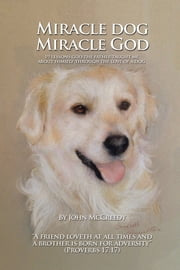 Miracle Dog Miracle God - What God the Father taught me about Himself through the love of a dog ebook by John McCreedy