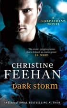 Dark Storm - Number 23 in series ebook by Christine Feehan